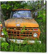 Old Abandoned Ford Truck In The Forest Canvas Print