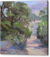 Old Agoura Canvas Print