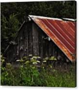 Old Alaskan Shed Canvas Print