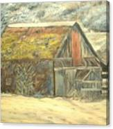 Old Barn Mossey Roof Canvas Print
