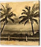 Old Beach Canvas Print