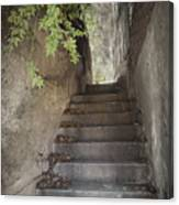 Old Bisbee Stairway Canvas Print