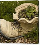 Old Boot Canvas Print