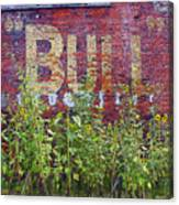 Old Bull Durham Sign - Delta Canvas Print