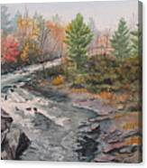 Old Burleigh Stream Canvas Print