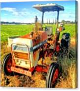 Old David Brown Tractor  Canvas Print