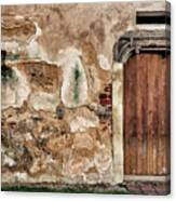 Old Door. Canvas Print