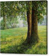 Old Elms In Kernave Canvas Print