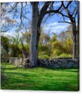 Old Family Plot In Cromwell Valley Park Canvas Print