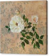 Old Fashioned Rose Canvas Print
