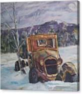 Old Friend II Canvas Print