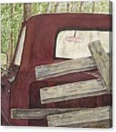 Old Friend Canvas Print