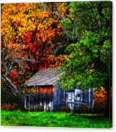 Old Homestead And The Apple Tree Canvas Print