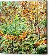 Old Iron Door Canvas Print