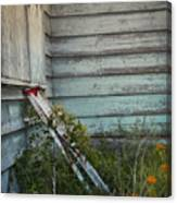 Old Ladder Canvas Print