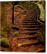 Old Man's Stairs Canvas Print