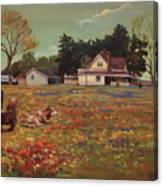Old Mazoch Farm Canvas Print