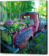 Old Pickup Truck As Flower Bed Canvas Print