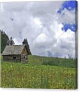 Old Ranchers Summer Cabin Redone Canvas Print