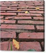 Old Red Brick Road Canvas Print