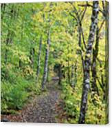 Old Rr Right-away Canvas Print