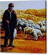Old Shepard From Mt. Peshter Canvas Print