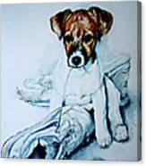 Old Shoe Pup Canvas Print