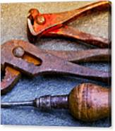 Old Tools Canvas Print