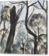 Old Tree Near Turkey Mountain Canvas Print