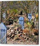Old Tucson Graveyard Canvas Print
