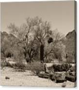 Old Tucson Landscape  Canvas Print