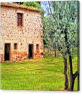 Old Villa And Olive Trees Canvas Print