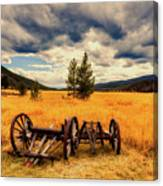 Old Wagons In Meadow Canvas Print