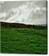 Old Wall, New Gate Canvas Print