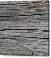 Old Weathered Wood Board Canvas Print