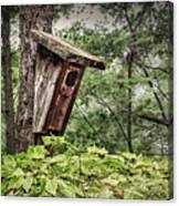 Old Weathered Worn Bird House In Summer Canvas Print