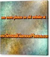Old Website Canvas Print