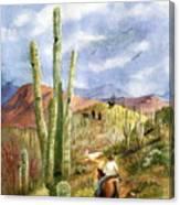 Old Western Skies Canvas Print