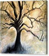 Old Wise Tree Canvas Print