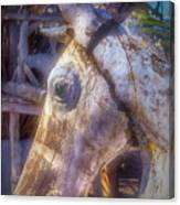 Old Wooden Horse Head Canvas Print