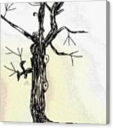 Oldest Tree Canvas Print