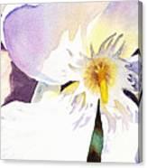 Oleander Flower By Irina Sztukowski Canvas Print