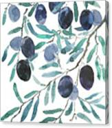 Olive Watercolor 2018 Canvas Print