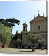 Olive Wood Trees Canvas Print
