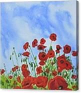 Olivia's Poppies Canvas Print