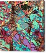Olivine Marble Canvas Print