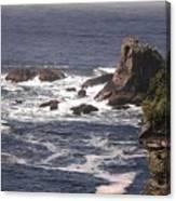 Olympic Peninsula Coastline Canvas Print