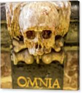Omnia Mors Aequat Canvas Print