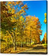 On A Country Road 4 - Paint Canvas Print