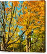On A Country Road 5 - Paint Canvas Print